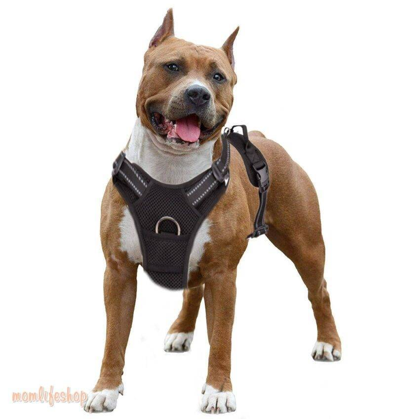 Truelove Pet Dog Harness Breathable Mesh Padded Outdoor Sport No Pull Vest Adjustable Harness For Medium Large Dog Accessories Pet Supplies color: Black|Orange|Red